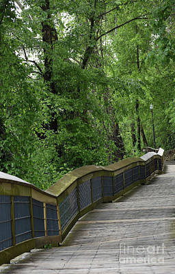 Photograph - Cayce River Walk Rebuilt.  by Skip Willits