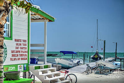 Photograph - Caye Caulker Belize Tours by David Zanzinger