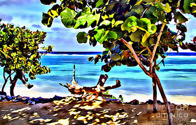 Caribbean Sea Digital Art - Cayman Cove by Carey Chen