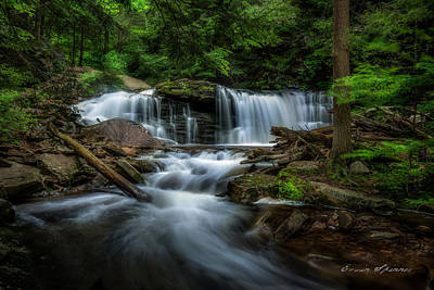 Photograph - Cayuga Falls At Ricketts Glen by Erwin Spinner