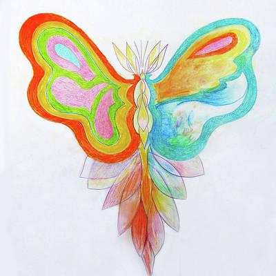 Photograph - Cd Design - Butterfly by Rosanne Licciardi