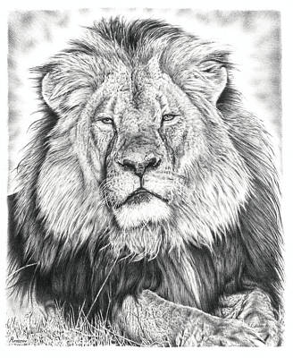 Animals Drawings - Cecil The Lion  by Casey