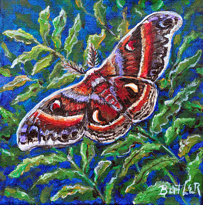 Painting - Cecropia Moth by Gail Butler