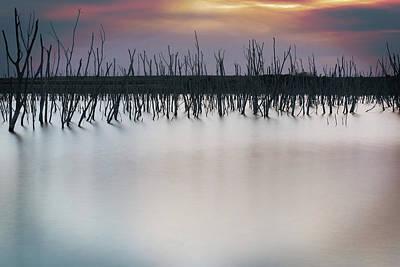 Photograph - Cedar Bluff by Bud Simpson