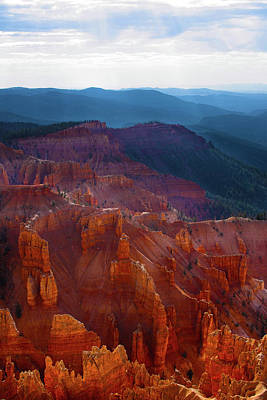 Cedar Breaks Brilliance Art Print