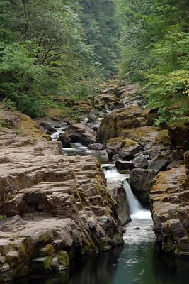 Photograph - Cedar Creek #2 by Ben Upham III