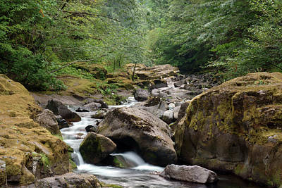 Photograph - Cedar Creek #4 by Ben Upham III