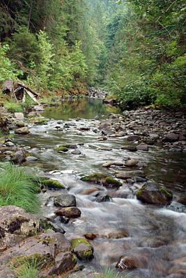 Photograph - Cedar Creek #6 by Ben Upham III