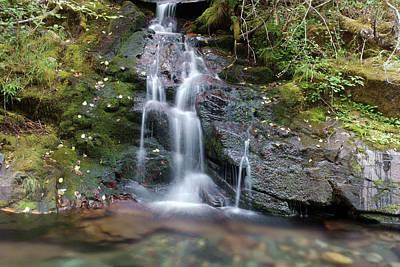 Photograph - Cedar Creek #8 by Ben Upham III