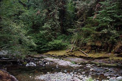 Photograph - Cedar Creek #9 by Ben Upham III