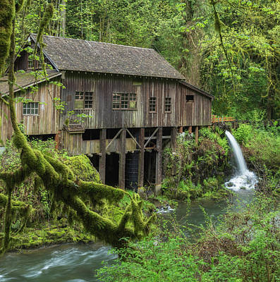 Photograph - Cedar Creek Grist Mill by Angie Vogel