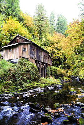 Photograph - Cedar Creek Grist Mill In Washington by Athena Mckinzie