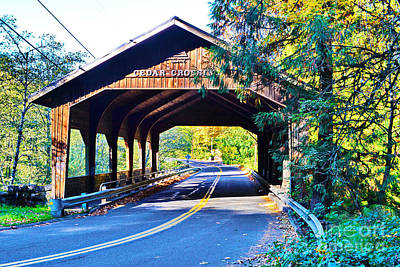Photograph - Cedar Crossing Bridge by Ansel Price