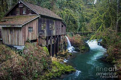 Photograph - Cedar Grist Mill by Patricia Babbitt