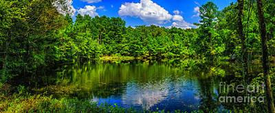 Photograph - Cedar Pond by Nick Zelinsky
