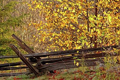 Photograph - Cedar Rail Fence Autumn by Debbie Oppermann