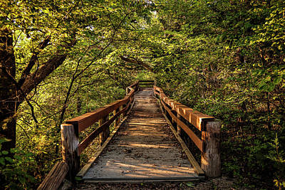 Photograph - Cedar Ridge Trail by Scott Bean