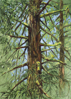Painting - Cedar by Shari Erickson