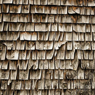 Photograph - Cedar Shingles Pattern by Edward Fielding