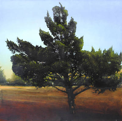 Painting - Cedar Sold by Cap Pannell