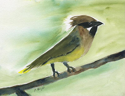 Cedar Waxwings Painting - Cedar Waxwing Abstract by Frank Bright