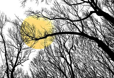 Photograph - Celestial Hug by Diana Angstadt