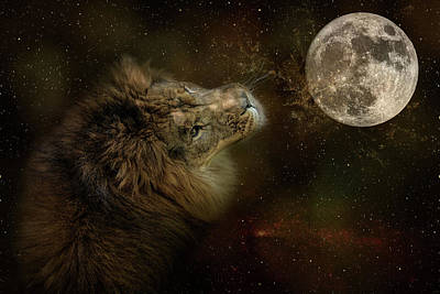 Photograph - Celestial Lion by Jai Johnson