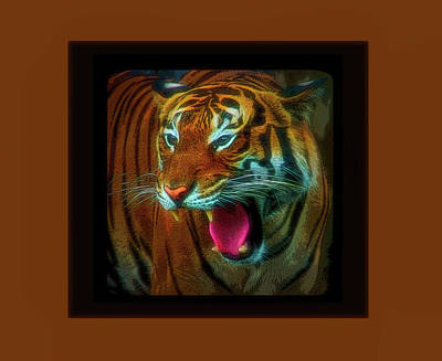 Photograph - Celestial Skies Portrait Of A Tiger by Aimee L Maher ALM GALLERY