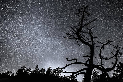 Photograph - Celestial Stellar Dark Universe by James BO  Insogna