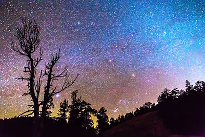 James Insogna Photograph - Celestial Universe by James BO  Insogna