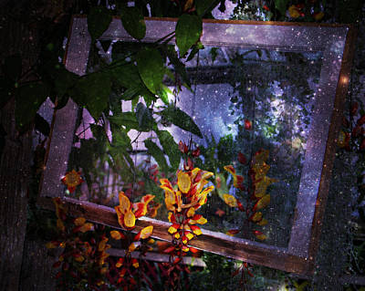 Photograph - Celestial Window Blooms by Kathy M Krause