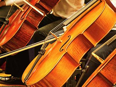 Photograph - Cellos by Steven Ralser