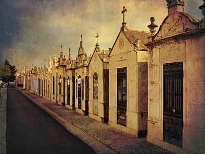 Photograph - Cemetary In Santarem Portugal by Menega Sabidussi