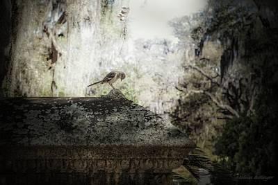 Photograph - Cemetery Crypt Mockingbird Landscape by Melissa Bittinger