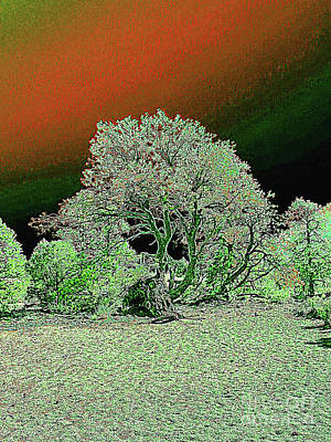 Digital Art - Center Tree With Character And Neighbors by Merton Allen