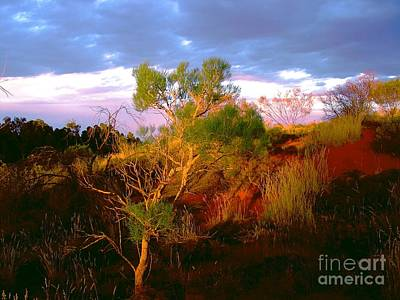Photograph - Central Australia II by Louise Fahy