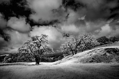 Photograph - Central California Ranch by Sean Foster