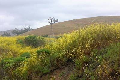 Photograph - Central Coast Farm by Douglas Miller