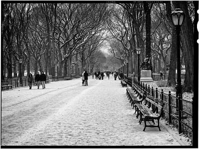 Photograph - Central Park 2 by Wayne Gill