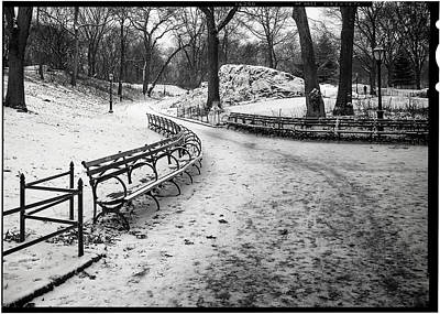 Photograph - Central Park 3 by Wayne Gill