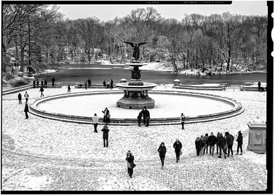 Photograph - Central Park 5 by Wayne Gill
