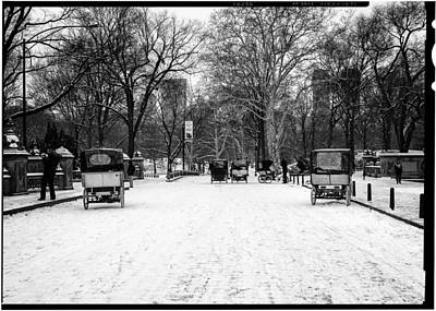 Photograph - Central Park 7 by Wayne Gill