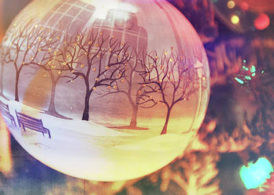 Photograph - Central Park Bauble by JAMART Photography