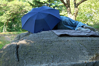 Photograph - Central Park Beauty Rest by Vinnie Oakes