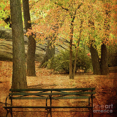 Photograph - Central Park Benches by Dorothy Lee
