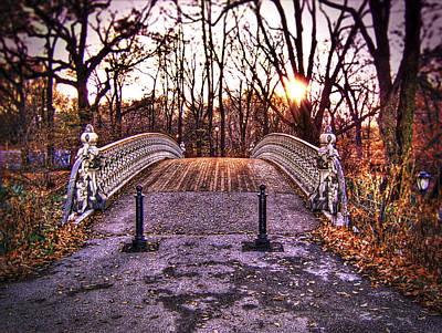 Photograph - Central Park Bridge by Tammy Wetzel
