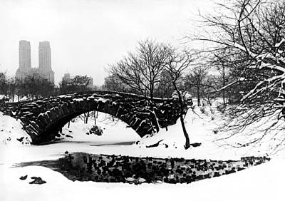 Bare Trees Photograph - Central Park Duck Pond by American School