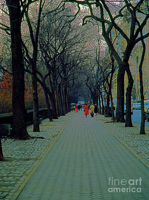 Photograph - Central Park East by Tom Jelen