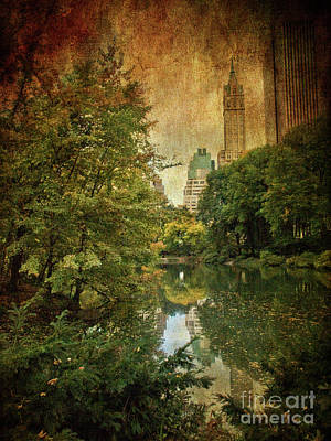 Photograph - Central Park In Autumn Texture 4 by Dorothy Lee