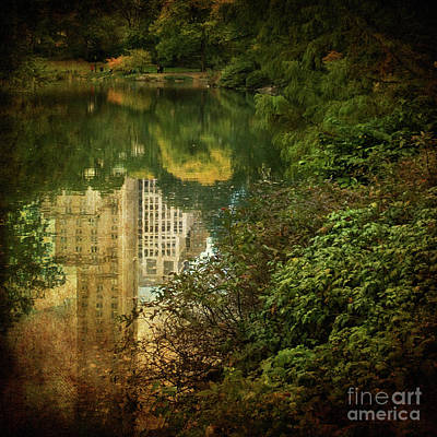 Photograph - Central Park In Autumn Texture 3 by Dorothy Lee
